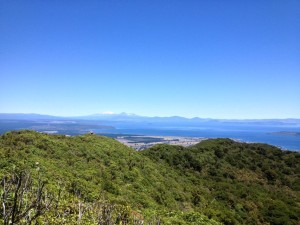 Tauhara view